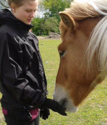 Egemosegård – Autisme og heste